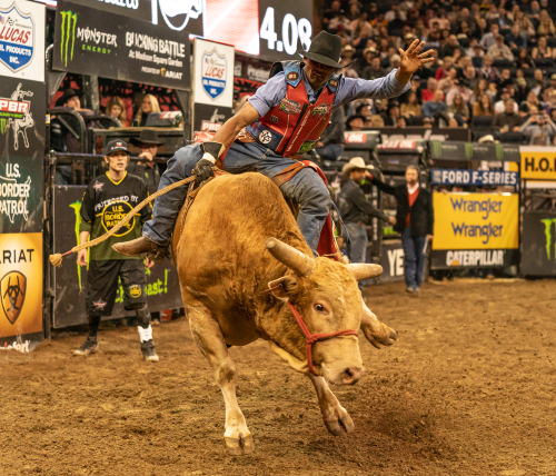 Tips To Successful Professional Bull Rider