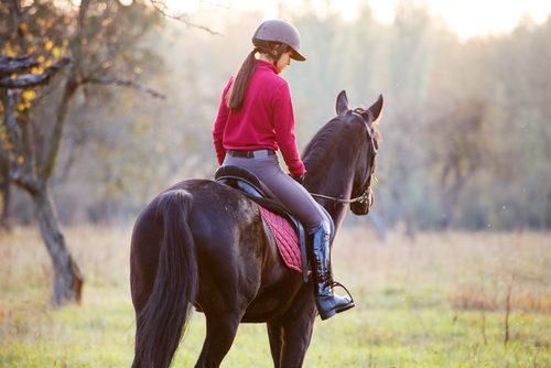 7 Tips About Horseback Riding Safety